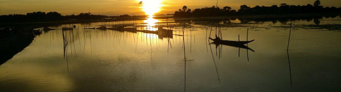 Quiet Revolution in Aquaculture